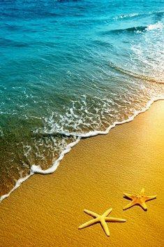 חבילת שייט: האיים הקנריים ומרוקו על אוניית MSC Magnifica - פסח!