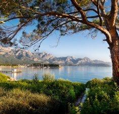 קלאב מד קמר, טורקיה